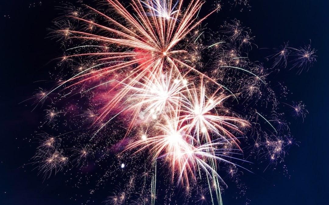 The Perfect Bonfire Night at The Elm Tree!