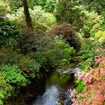 The History of Bodnant Garden – Planting the Seed of Beauty