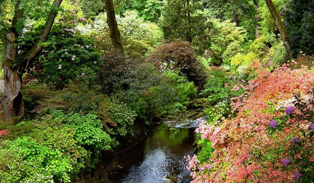 The History of Bodnant Garden - Planting the Seed of Beauty